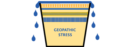 Geopathic Stress bucket