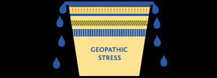 Geopathic Stress bucket